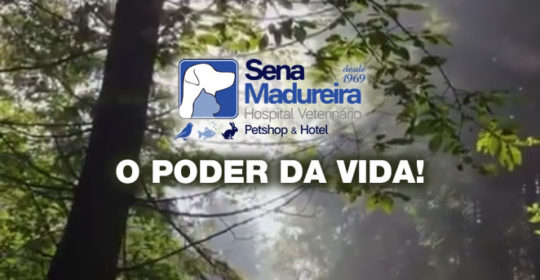 O Poder da Vida – Hospital Veterinário, Pet Shop & Hotel Sena Madureira